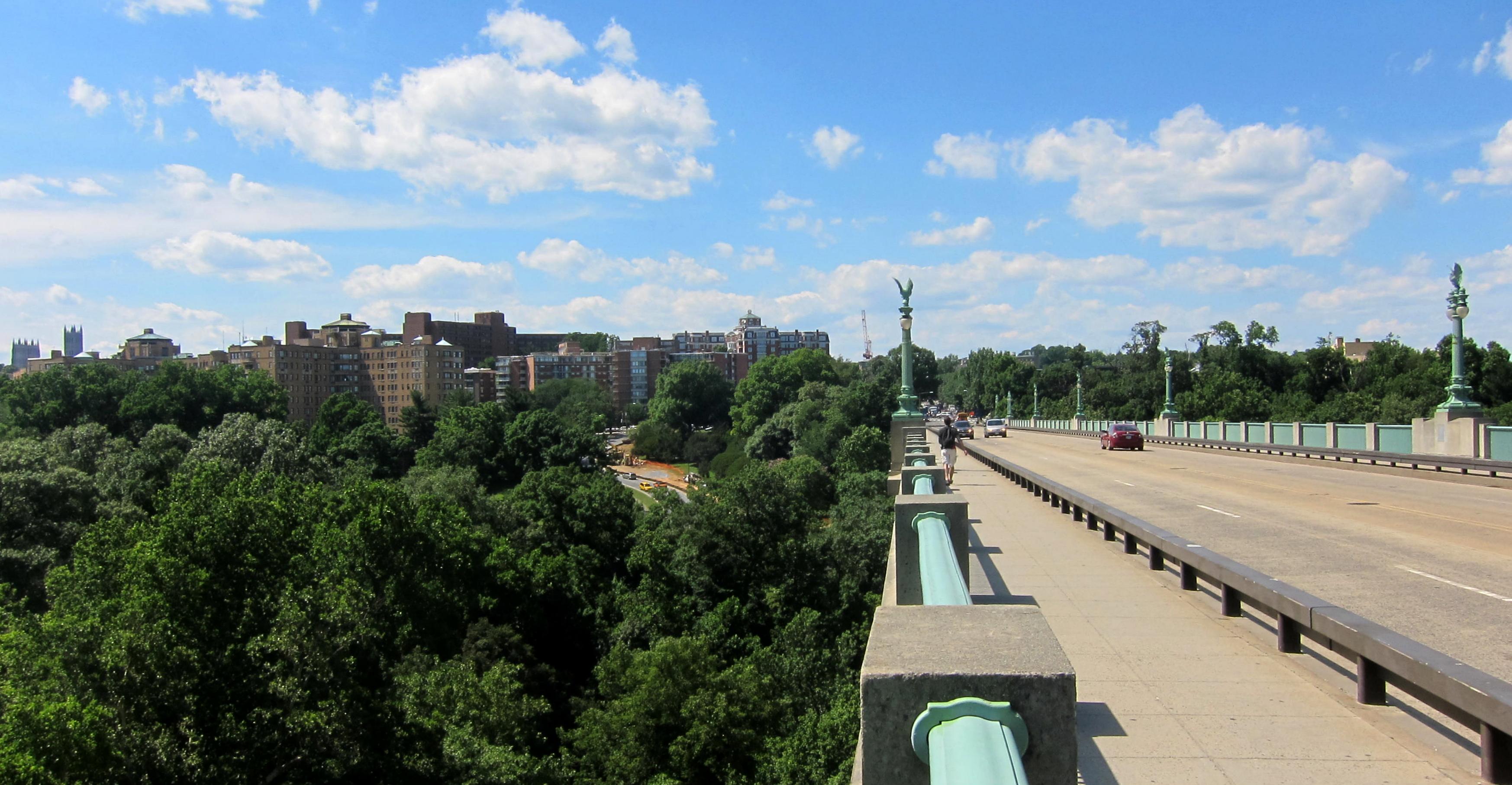 Taft_Bridge_-_Woodley_Park_skyline