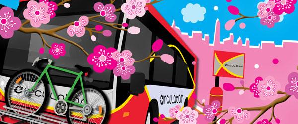 DC Circulator Cherry Blossom Festival Campaign