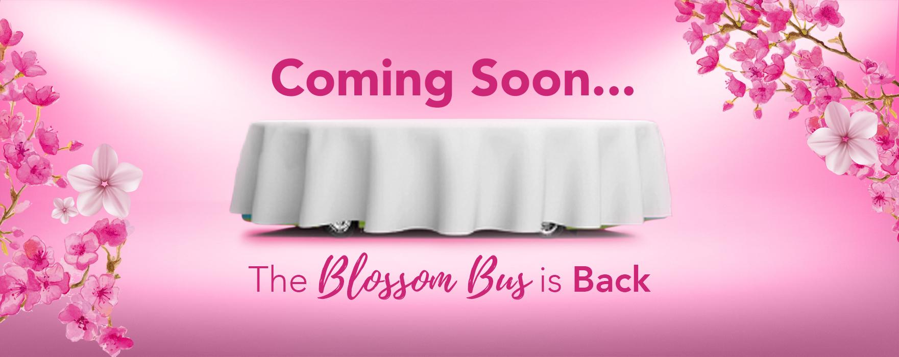 CB_coming soon2